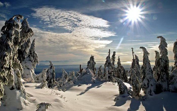 Солнечные лучи зимой красиво 1 dobrosos