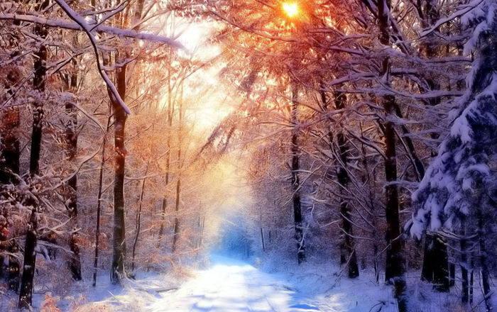 Солнечные лучи зимой красиво 6 dobrosos
