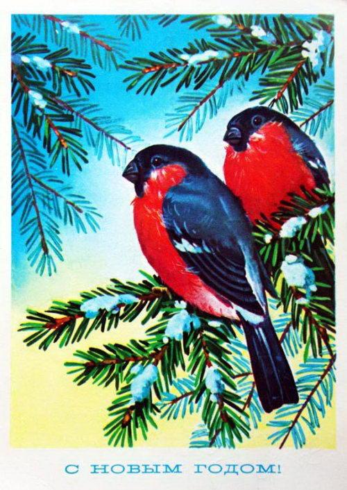 Советские новогодние открытки 39 dobrosos