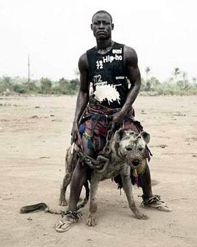 Домашние животные в Нигерии 03 dobrosos