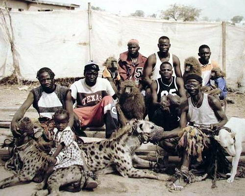 Домашние животные в Нигерии 11 dobrosos