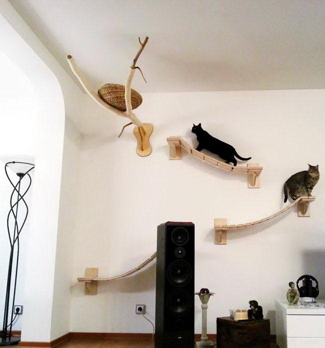 кошачья комната 03 dobrosos