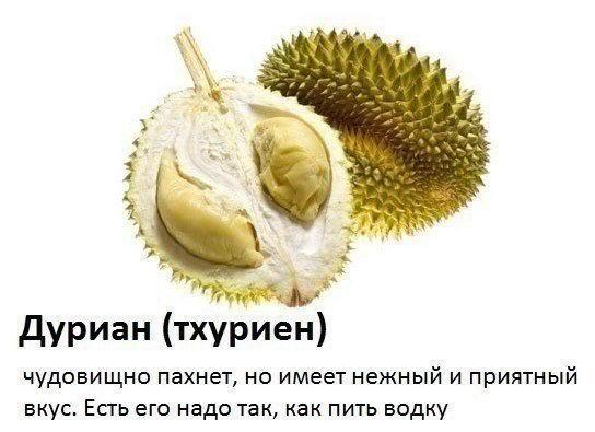 Эти фрукты нужно попробовать (8 фото)