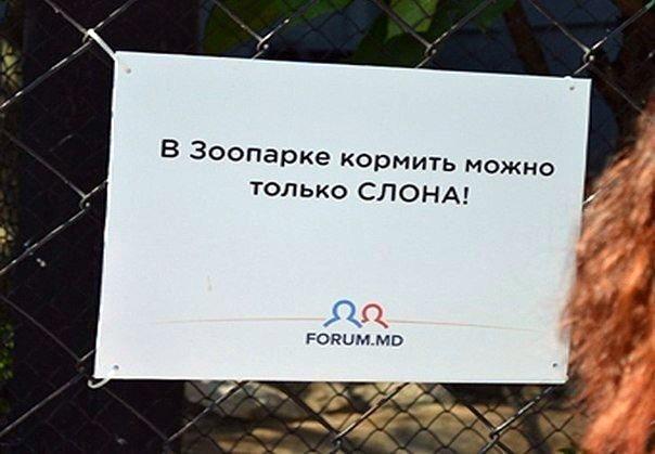 таблички в зоопарке Кишинева 02