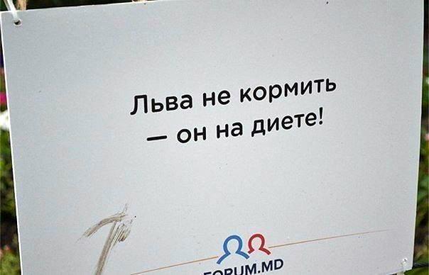 таблички в зоопарке Кишинева 05
