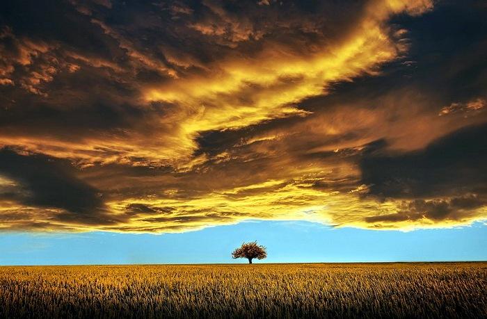 красивая природа шикарная природа