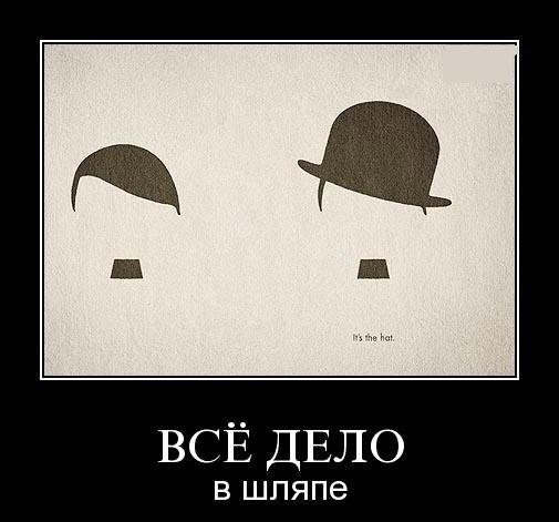 все дело в шляпе, демотиватор