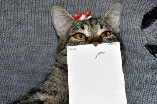 кот нарисованный рот